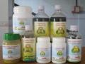 Pharmacy-09